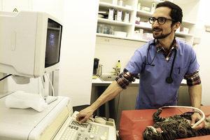 VETOCAMBRE - Stérilisation