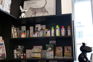 Veterinary Cabinet of the Cambre - Our services